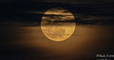 Full Moon, Moon, Tucson, desert trails, moon rise